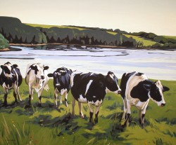Five Cows   30x36